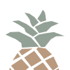 Metz Orthodontices Pineapple Logo